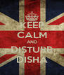 KEEP CALM AND DISTURB DISHA - Personalised Poster A4 size
