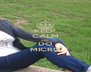 KEEP CALM AND DO MICRO - Personalised Poster A4 size