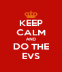 KEEP CALM AND DO THE EVS - Personalised Poster A4 size