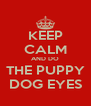 KEEP CALM AND DO THE PUPPY DOG EYES - Personalised Poster A4 size