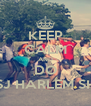 KEEP CALM AND DO THE SJ HARLEM SHAKE - Personalised Poster A4 size