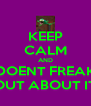 KEEP CALM AND DOENT FREAK OUT ABOUT IT - Personalised Poster A4 size