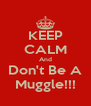KEEP CALM And Don't Be A Muggle!!! - Personalised Poster A4 size