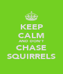 KEEP CALM AND DON'T CHASE SQUIRRELS - Personalised Poster A4 size