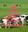 KEEP CALM AND DON'T  PASTHING! - Personalised Poster A4 size