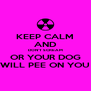 KEEP CALM AND DON'T SCREAM OR YOUR DOG WILL PEE ON YOU - Personalised Poster A4 size