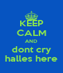 KEEP CALM AND dont cry halles here - Personalised Poster A4 size