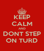 KEEP CALM AND DONT STEP ON TURD - Personalised Poster A4 size