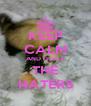 KEEP CALM AND DOOK THE HATERS - Personalised Poster A4 size