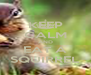 KEEP CALM AND EAT A SQUIRREL - Personalised Poster A4 size