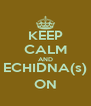 KEEP CALM AND ECHIDNA(s) ON - Personalised Poster A4 size