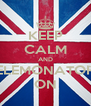KEEP CALM AND ELEMONATOR ON - Personalised Poster A4 size