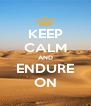 KEEP CALM AND ENDURE ON - Personalised Poster A4 size