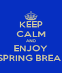 KEEP CALM AND ENJOY HONOR SPRING BREAK PARTY - Personalised Poster A4 size