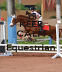 KEEP CALM AND Equestrian  - Personalised Poster A4 size