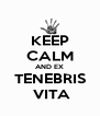 KEEP CALM AND EX TENEBRIS  VITA - Personalised Poster A4 size