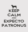 KEEP CALM AND EXPECTO PATRONUS - Personalised Poster A4 size