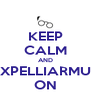 KEEP CALM AND EXPELLIARMUS ON - Personalised Poster A4 size