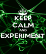 KEEP CALM AND EXPERIMENT  - Personalised Poster A4 size