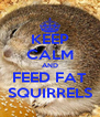 KEEP CALM AND FEED FAT SQUIRRELS - Personalised Poster A4 size