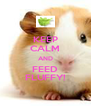 KEEP CALM AND FEED FLUFFY! - Personalised Poster A4 size
