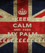 KEEP CALM AND  FEED MY PALM ££££££££££££ - Personalised Poster A4 size