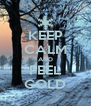 KEEP CALM AND FEEL COLD - Personalised Poster A4 size