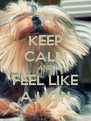KEEP CALM AND FEEL LIKE A LION - Personalised Poster A4 size
