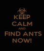 KEEP CALM AND  FIND ANTS NOW! - Personalised Poster A4 size