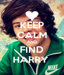 KEEP CALM AND FIND HARRY  - Personalised Poster A4 size