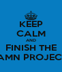 KEEP CALM AND FINISH THE DAMN PROJECTS - Personalised Poster A4 size
