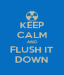 KEEP CALM AND FLUSH IT DOWN - Personalised Poster A4 size