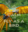 KEEP CALM AND FLY AS A BIRD - Personalised Poster A4 size