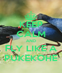 KEEP CALM AND FLY LIKE A PUKEKOHE - Personalised Poster A4 size