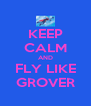 KEEP CALM AND FLY LIKE GROVER - Personalised Poster A4 size
