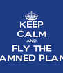 KEEP CALM AND FLY THE DAMNED PLANE - Personalised Poster A4 size