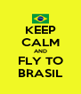 KEEP CALM AND FLY TO BRASIL - Personalised Poster A4 size