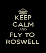 KEEP CALM AND FLY TO  ROSWELL - Personalised Poster A4 size