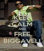 KEEP CALM AND FREE BIGGAVELI - Personalised Poster A4 size