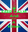 KEEP CALM And Fuck A Kitten - Personalised Poster A4 size
