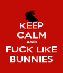 KEEP CALM AND FUCK LIKE BUNNIES - Personalised Poster A4 size