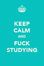 KEEP CALM AND FUCK STUDYING - Personalised Poster A4 size