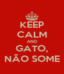 KEEP CALM AND GATO, NÃO SOME - Personalised Poster A4 size