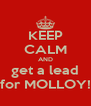 KEEP CALM AND get a lead for MOLLOY! - Personalised Poster A4 size
