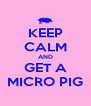 KEEP CALM AND GET A MICRO PIG - Personalised Poster A4 size
