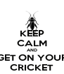 KEEP CALM AND GET ON YOUR CRICKET - Personalised Poster A4 size