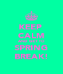 KEEP  CALM AND GET TO SPRING BREAK! - Personalised Poster A4 size