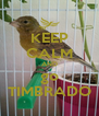 KEEP CALM AND go TIMBRADO - Personalised Poster A4 size