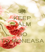 KEEP CALM AND GO TO MONEASA - Personalised Poster A4 size
