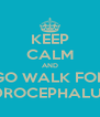 KEEP CALM AND GO WALK FOR HYDROCEPHALUS :D - Personalised Poster A4 size